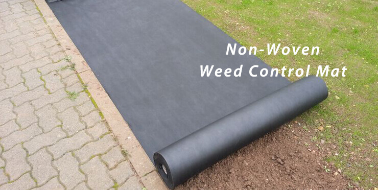 weed-preventing-ground-cover